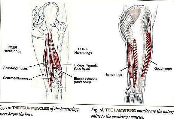 Aflastning for stramme hamstrings